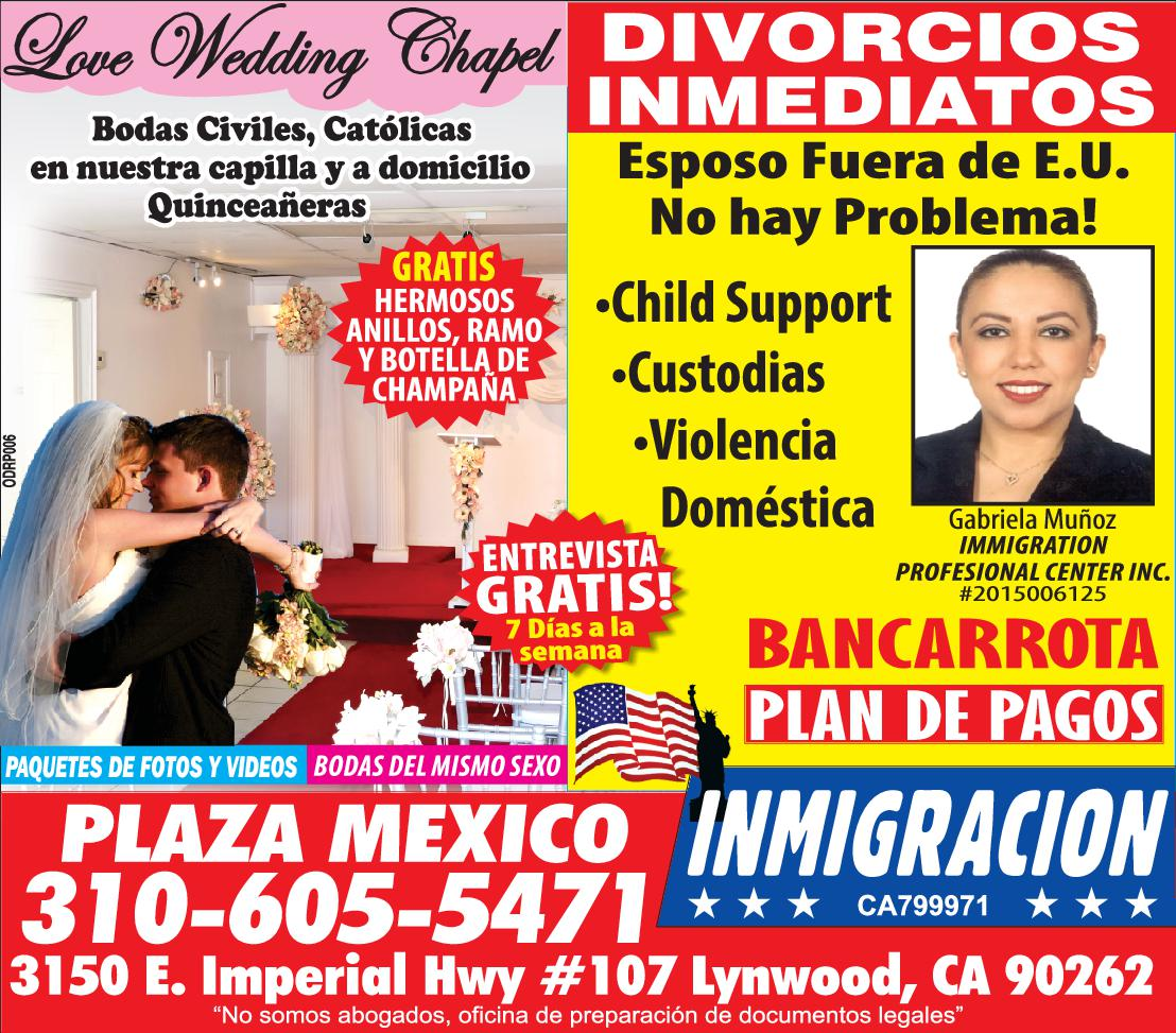 IMMIGRATION PROFESIONAL CENTER