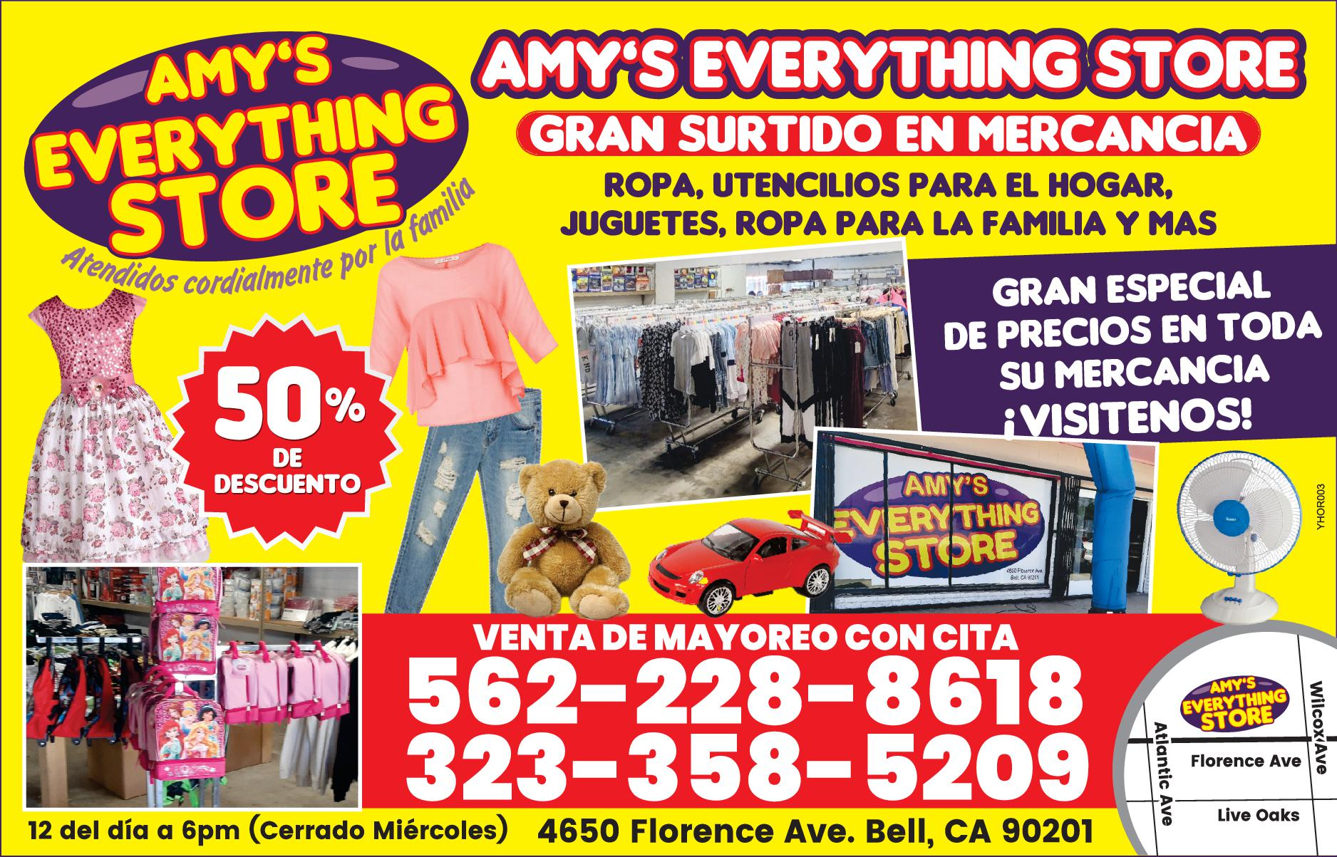AMYS EVERTHING STORE
